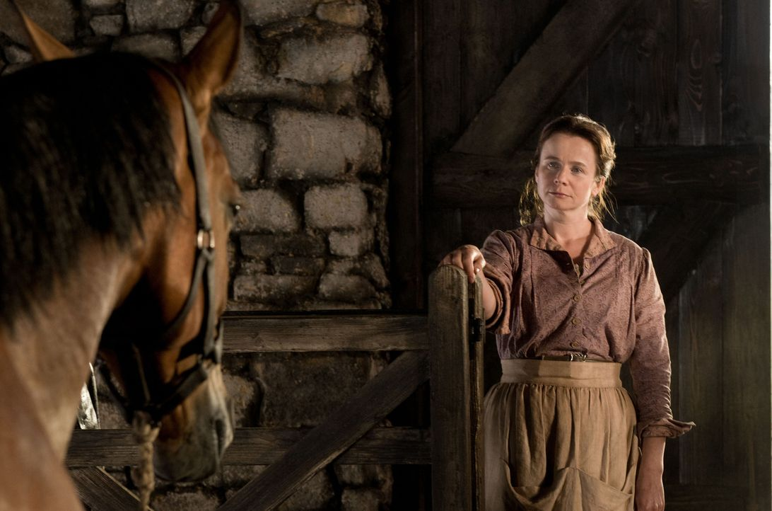 Rosie (Emily Watson) ist entsetzt, denn das Pferd, das ihr Mann ersteigert hat, ist kein Ackergaul, sondern ein edles Reitpferd, dass das steinige F... - Bildquelle: Dreamworks II Distribution Co., LLC.  All Rights Reserved
