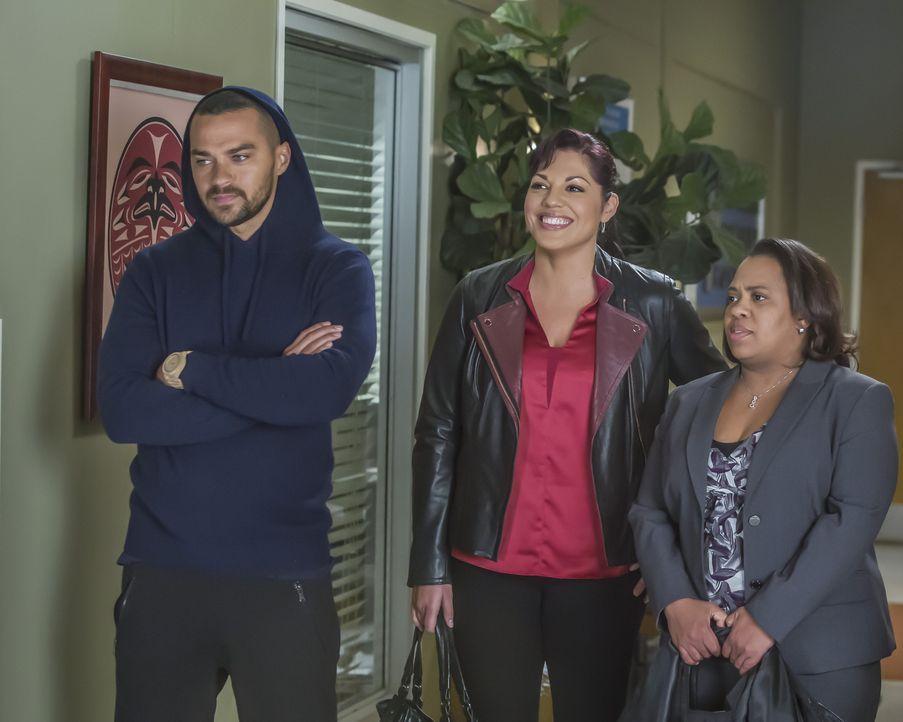 Auf Meredith, Bailey (Chandra Wilson, r.), Jackson (Jesse Williams, l.) und Callie (Sara Ramirez, M.) wartet ein ganz besonderer Einsatz. - Bildquelle: Ron Batzdorff ABC Studios