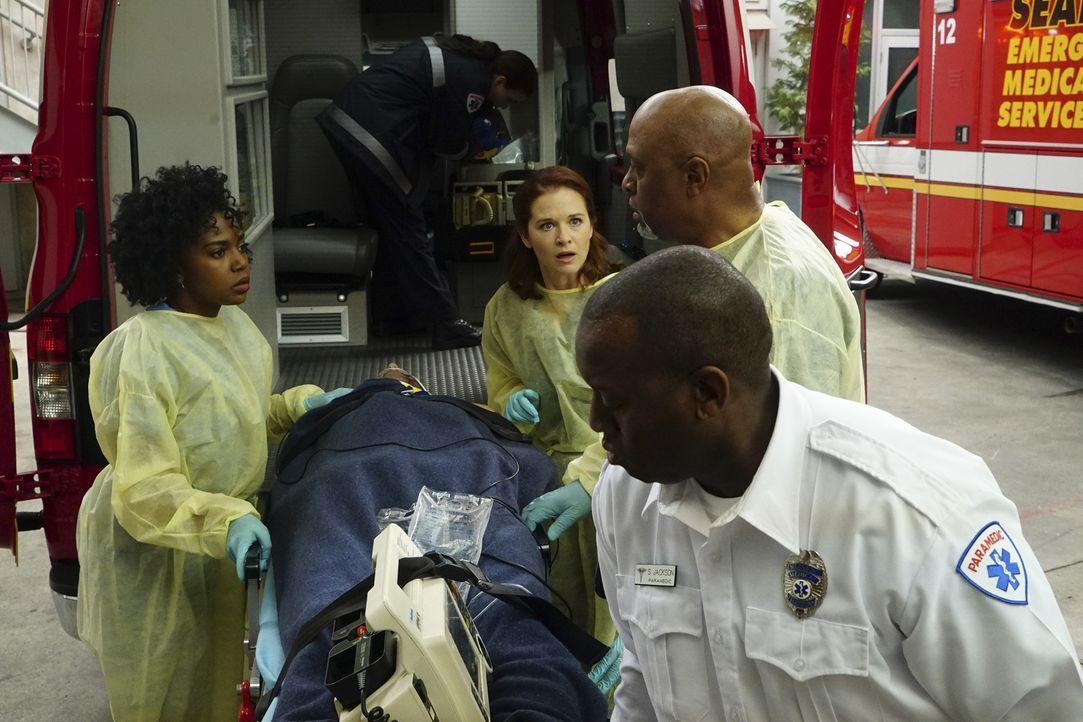 Familie McKay wird ins Krankenhaus eingeliefert. Die Ärzte um Stephanie (Jerrika Hinton, l.), April (Sarah Drew, 3.v.r.) und Webber (James Pickens J... - Bildquelle: Richard Cartwright ABC Studios