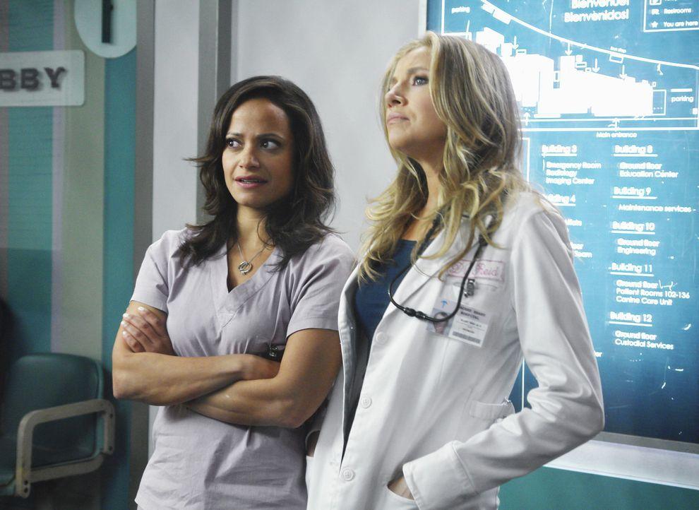 Wollen J.D. einen schönen Abschied bereiten: Elliot (Sarah Chalke, l.) und Carla (Judy Reyes, r.) ... - Bildquelle: Touchstone Television