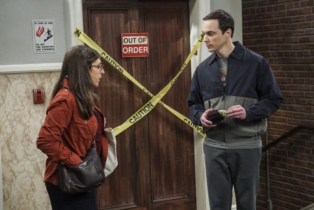 Da sich die Umbauarbeiten in Amys (Mayim Bialik, l.) Apartment angeblich noch auf unbestimmte Zeit hinziehen, muss sie weiterhin bei Sheldon (Jim Pa... - Bildquelle: 2016 Warner Brothers