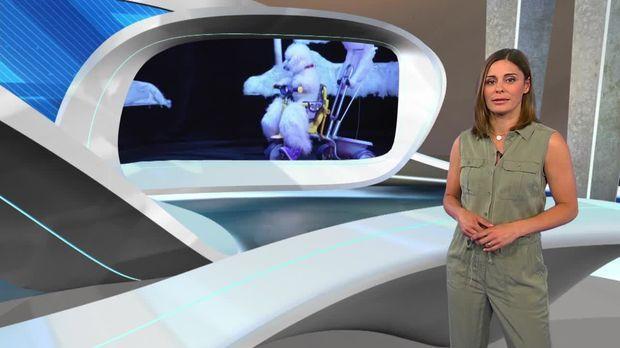 Galileo Big Pictures 2019 Ganze Folge