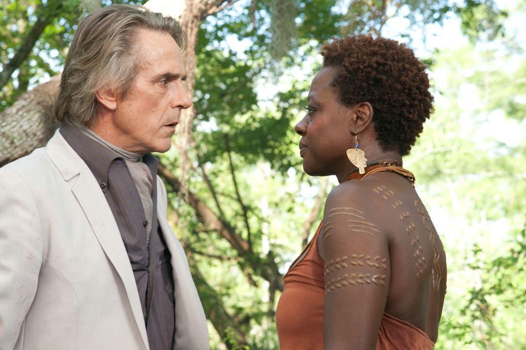 Als Seherin besitzt Amma Amma (Viola Davis, r.) die Fähigkeit, zu den Toten Kontakt aufzunehmen. Mit Hilfe eines Voodoo-Rituals beschwört sie den Ge... - Bildquelle: 2013 Concorde Filmverleih GmbH
