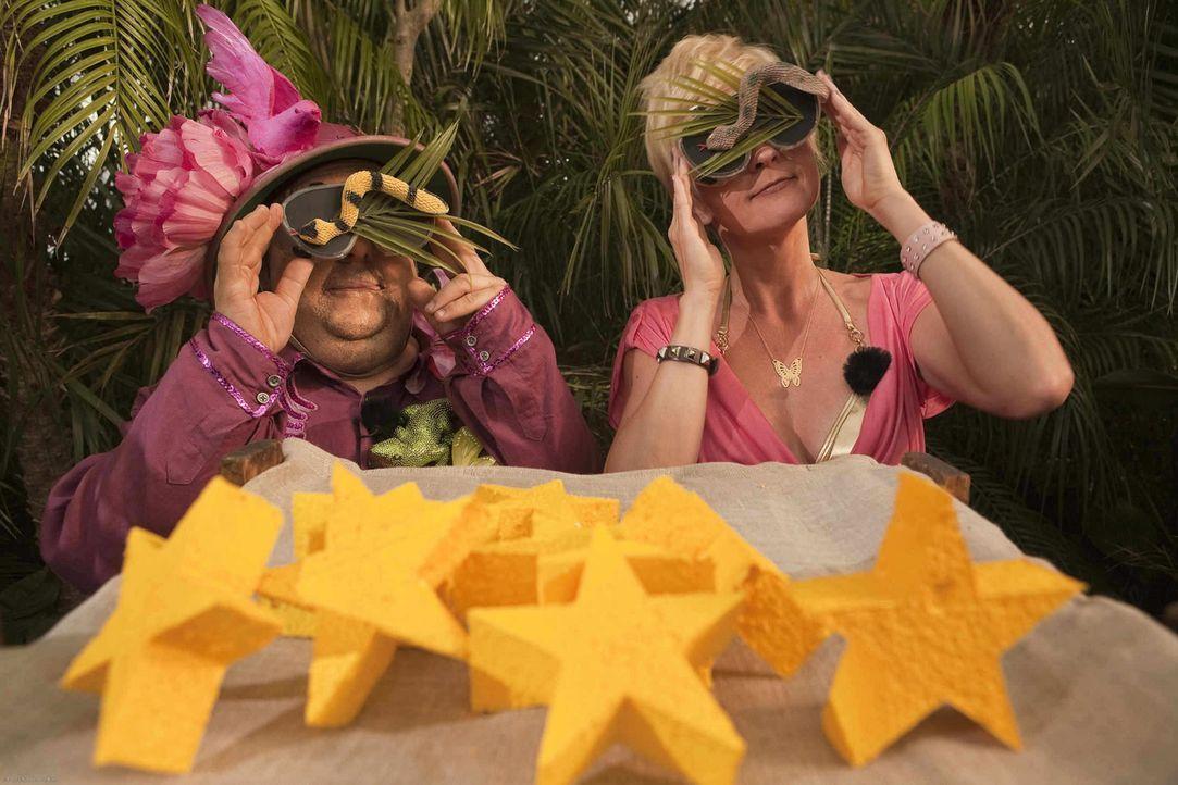 Wer erkämpft die meisten Sterne? Und wer wird Dschungel-König? Dirk Bach (Bernhard Hoecker, l.) und Sonja Zietlow (Susanne Pätzold, r.) ... - Bildquelle: ProSieben