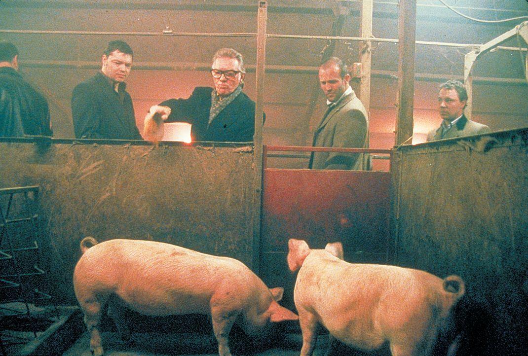 Haben weder Geld noch funktionsfähigen Boxer: Turkish (Jason Statham, r.) und Tommy (Stephen Graham, l.). Aber sie haben den eiskalten Schweinezücht... - Bildquelle: 2003 Sony Pictures Television International. All Rights Reserved.