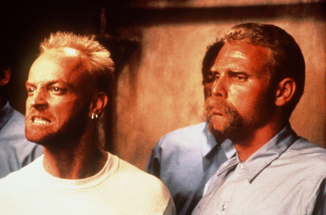 Während seiner Zeit im Gefängnis lernt Bobby, Auseinandersetzungen gewaltlos zu lösen ... - Bildquelle: Warner Bros.