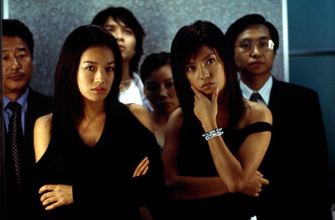 Ein Geschäftsmann heuert zwei Schwestern (Shu Qi, l. und Zhao Wie, r.) als Killer an, um seinen älteren Bruder umbringen zu lassen. Sein Ziel: die... - Bildquelle: Sony Pictures Television International. All Rights Reserved.