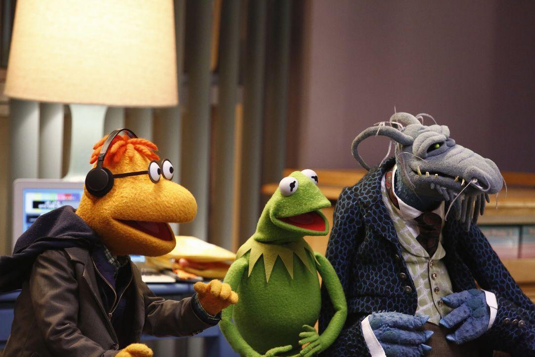 Senden von Miss Piggys Krankenhausbett aus: Kermit (M.), Onkel Tödlich (r.) und Scooter (l.) ... - Bildquelle: ABC Studios