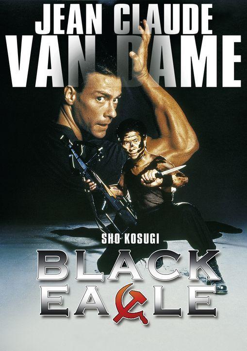 Black Eagle - Artwork - Bildquelle: RRS Entertainment