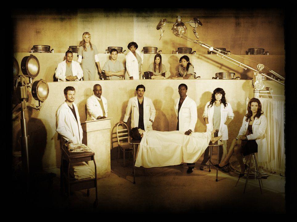 (3. Staffel) - Grey's Anatomy: (hinten v.l.n.r.) Dr. Alex Karev (Justin Chambers), Dr. Isobel 'Izzie' Stevens (Katherine Heigl), Dr. George O'Malley... - Bildquelle: Bob D'Amico Touchstone Television