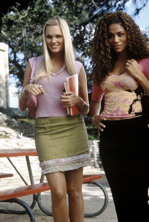 Auch die zwei attraktiven Mädels Courtney (Sunny Mabrey, l.) und Carmen (Joy Hadnott, r.) stehen auf Gil, den Obercoolen der Schule ... - Bildquelle: Senator Film