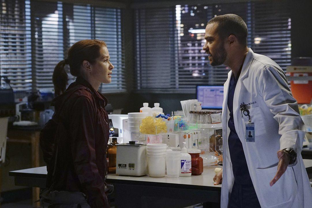 Geraten in Streit, nachdem Jackson (Jesse Williams, r.) von Arizona erfahren hat, dass April (Sarah Drew, l.) schwanger ist ... - Bildquelle: Richard Cartwright ABC Studios
