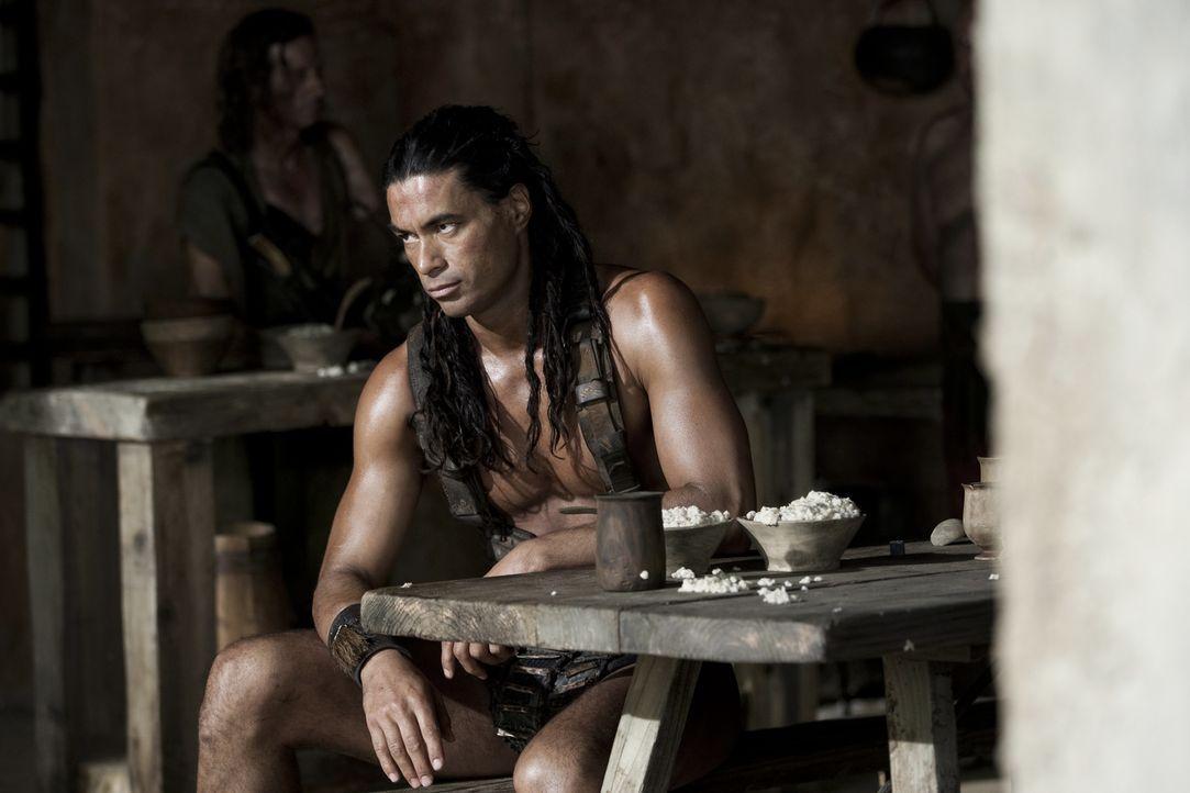 """Barca (Antonio Te Maioha) trägt den Spitznamen """" Die Bestie von Karthago"""". Er macht Spartacus schon sehr bald klar, wer im """"Ludus"""" das Sagen hat ... - Bildquelle: 2010 Starz Entertainment, LLC"""