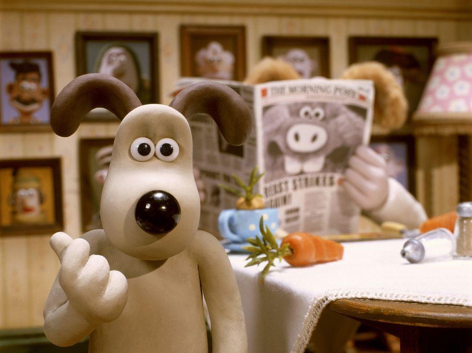 Irgendetwas ist hier faul: Gromit der Hund will der Sache auf den Grund gehen ... - Bildquelle: Telepool GmbH