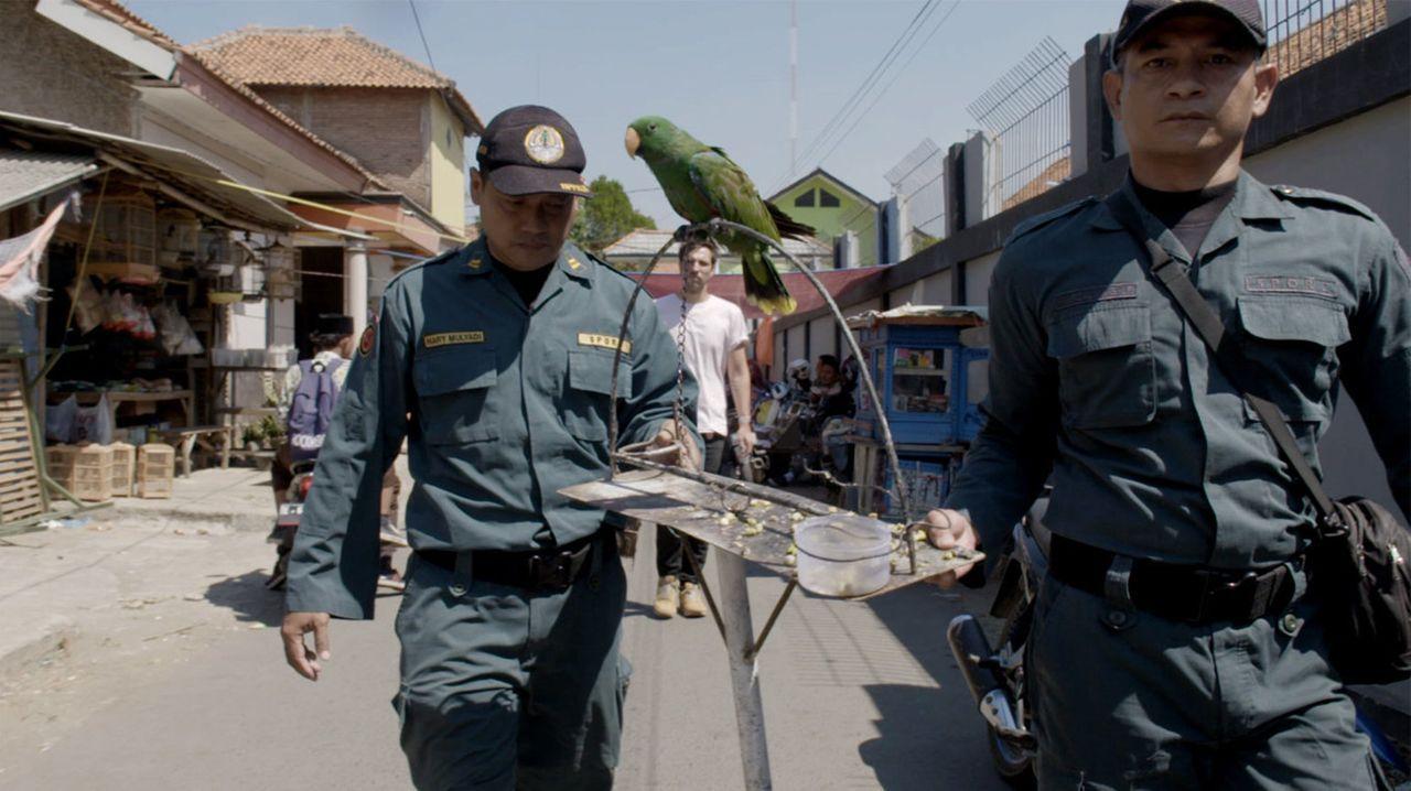 Thilo Mischke (M.) reist nach Südafrika und Indonesien, um sich das Geschäft mit einigen der bedrohten Tierarten selbst anzuschauen. Wer profitiert?... - Bildquelle: ProSieben