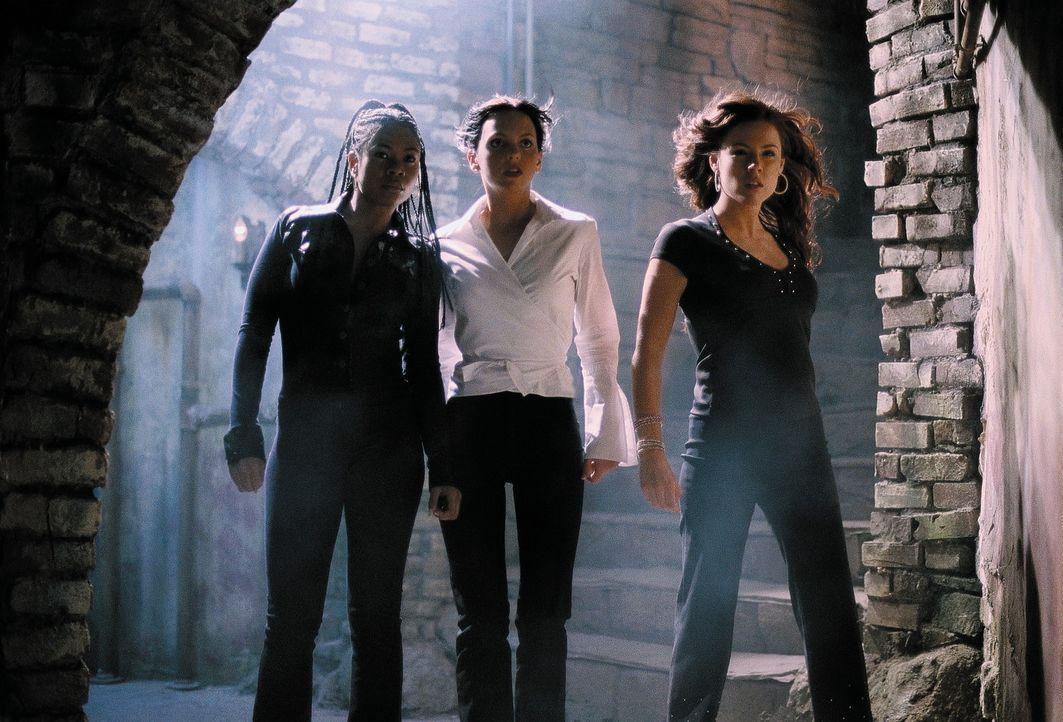 (v.l.n.r.) Brenda (Regina Hall), Cindy (Anna Faris) und Theo (Kathleen Robertson) müssen sich mit einem Poltergeist herumschlagen, der nur ein wirk... - Bildquelle: Miramax Films