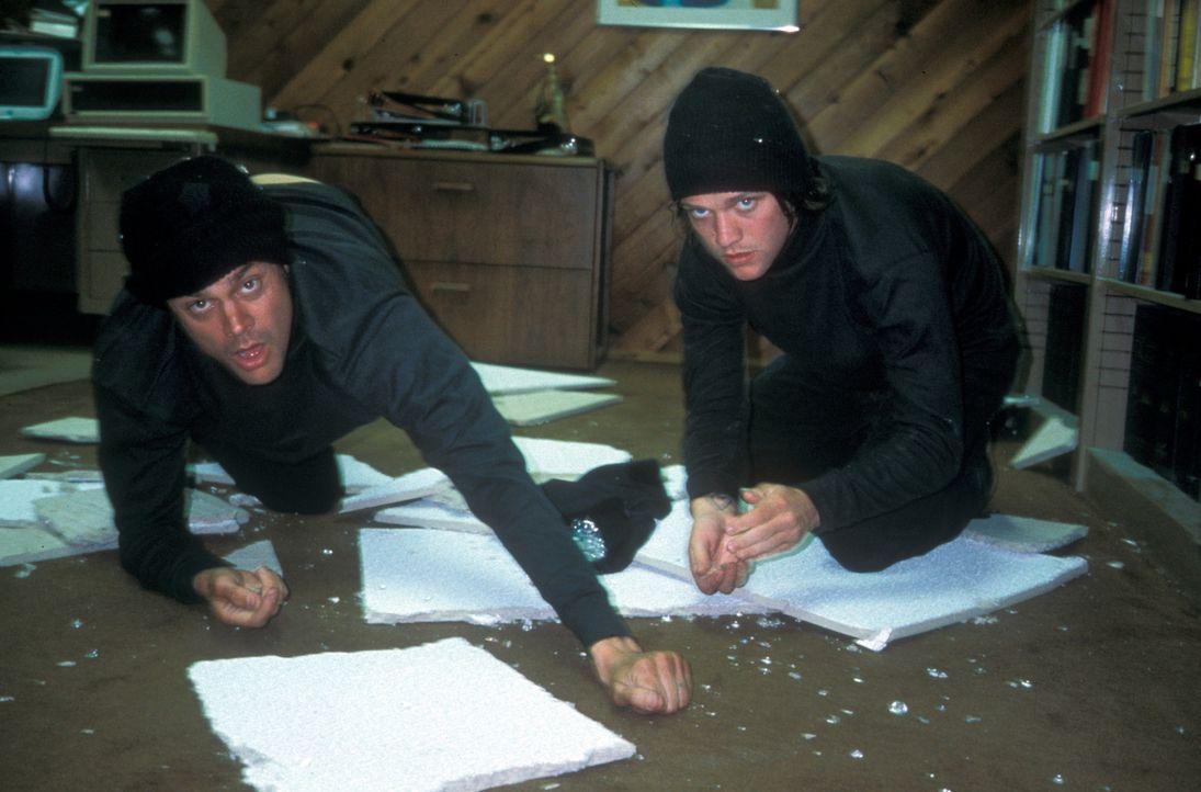 Bam Margera, r. und Johnny Knoxville, l. fürchten weder Tod noch Teufel und setzen sich mal wieder waghalsigen Aktionen aus ... - Bildquelle: Paramount Pictures
