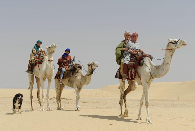 Müssen sich auf eine lebensgefährliche Wüstendurchquerung begeben, während ihre Gegner alles versuchen, um sie zu stoppen: (v.l.n.r.) Timmy, der Hun... - Bildquelle: 2014 Constantin Film Verleih GmbH.