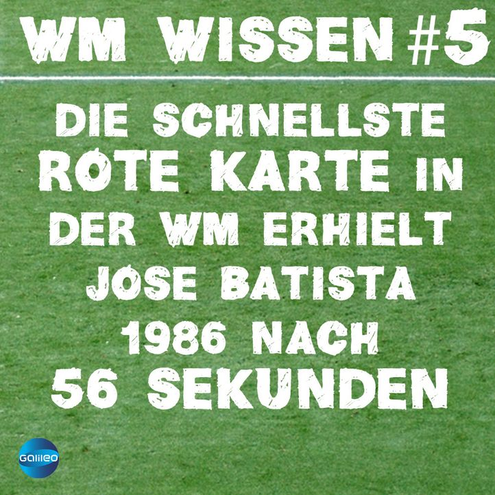 wmwissen5