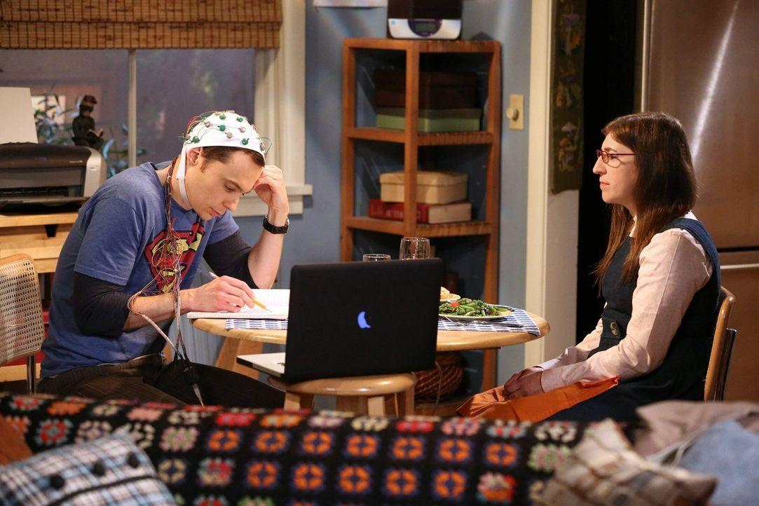 Sheldon (Jim Parsons, l.) macht es Amy (Mayim Bialik, r.) mal wieder nicht leicht ... - Bildquelle: Warner Bros. Television