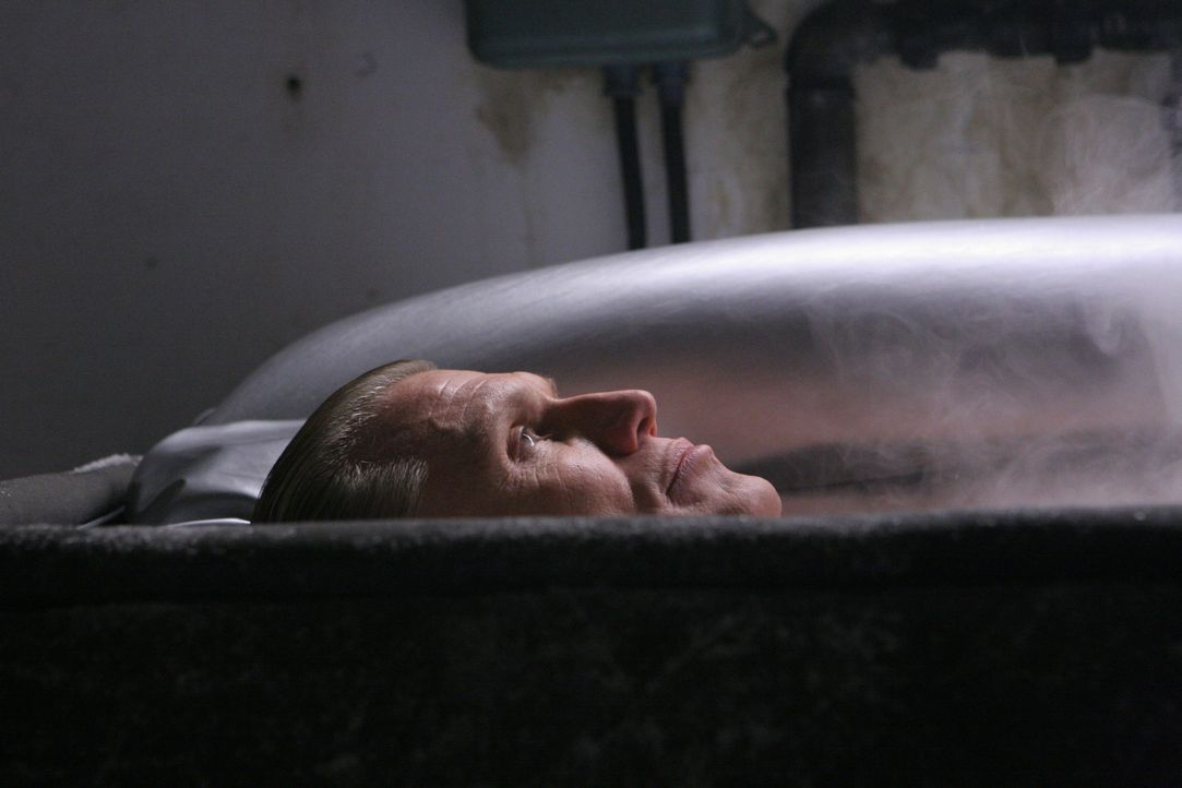 Wird aus seiner Kühltruhe entlassen und in den Kampf geschickt: Ex-Universal Soldier Andrew Scott (Dolph Lundgren) ... - Bildquelle: 2009, Signature Pictures, Foresight Unlimited