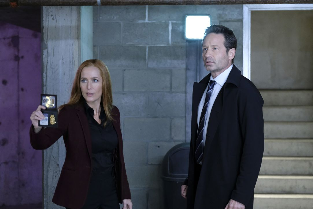 Scully (Gillian Anderson, l.) und Mulder (David Duchovny, r.) ermitteln in einem Fall, bei dem sich eine ganze Gruppe Menschen an eine alternative R... - Bildquelle: Shane Harvey 2018 Fox and its related entities.  All rights reserved.