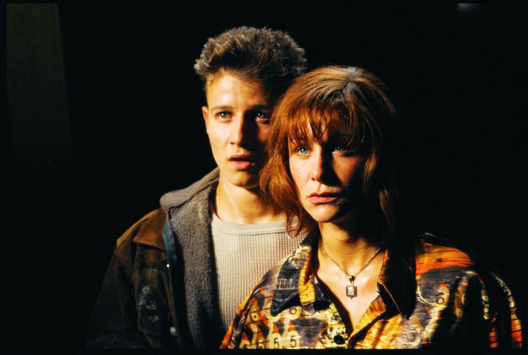 Als Nicky (Will Estes, l.) und Remy (Alix Koromzay, r.) bemerken, dass die klebrigen Spinnenkäfer in den Körper ihrer Opfer schlüpfen, beginnt ei... - Bildquelle: Miramax Films