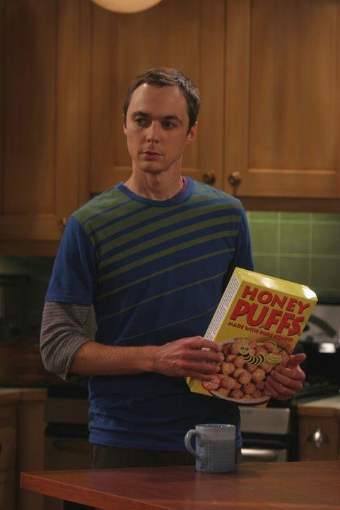 Penny erwartet eine Möbellieferung, kann allerdings zum angegebenen Lieferzeitpunkt nicht Zuhause sein, und so bittet sie Leonard und Sheldon (Jim... - Bildquelle: Warner Bros. Television