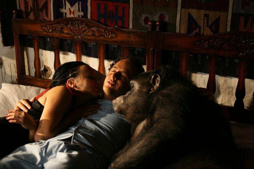 Müssen sich mit einem Affen das Bett teilen: Moes (Jon Karthaus, r.) und Taffie (Monique van der Werff, l.) ...
