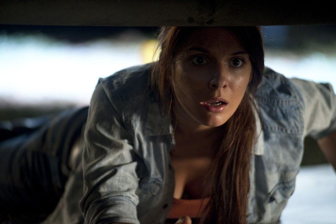 Aus einem Kurzurlaub in der Wildnis zurückgekehrt, muss Ellie (Caitlin Stasey) erfahren, dass zu Hause der Krieg ausgebrochen ist. Ein gnadenloser... - Bildquelle: Splendid Film