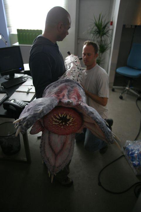 Die Riesenwürmer entstehen ... - Bildquelle: ITV Plc