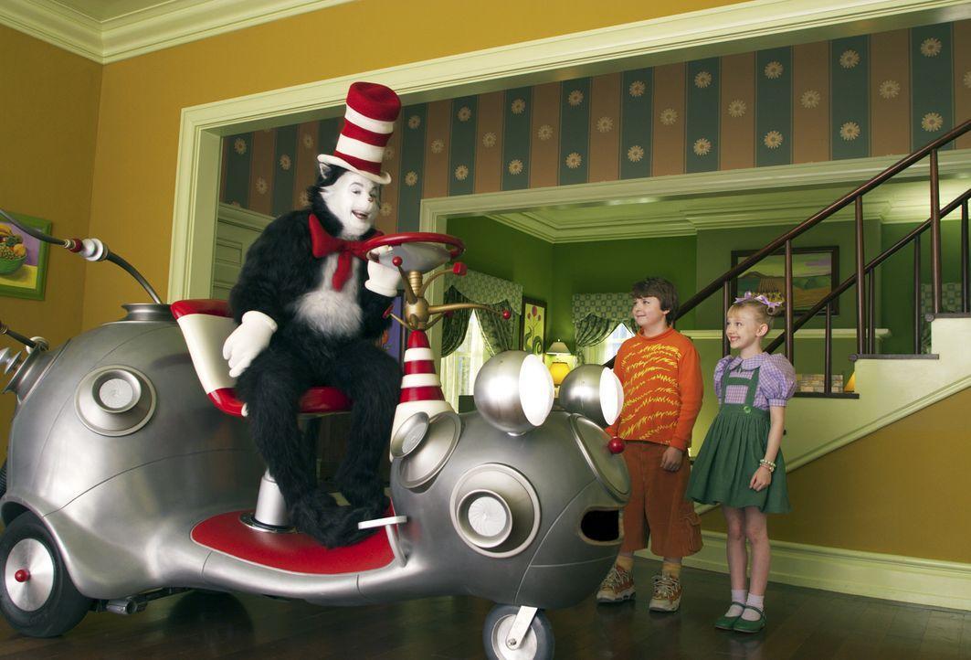 Gemeinsam mit dem Kater (Mike Myers, l.) und mit seinen Helfern Ding 1 sowie Ding 2 erleben Conrad (Spencer Breslin, M.) und Sally (Dakota Fanning,... - Bildquelle: TM &   2003 DreamWorks LLC. All Rights Reserved.