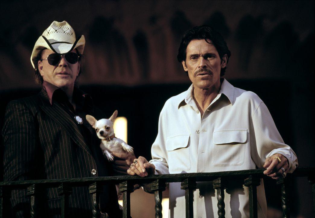 Billy (Mickey Rourke, l.) steht Barillo (Willem Dafoe, r.) tatkräftig zur Seite ... - Bildquelle: Columbia Pictures Corporation