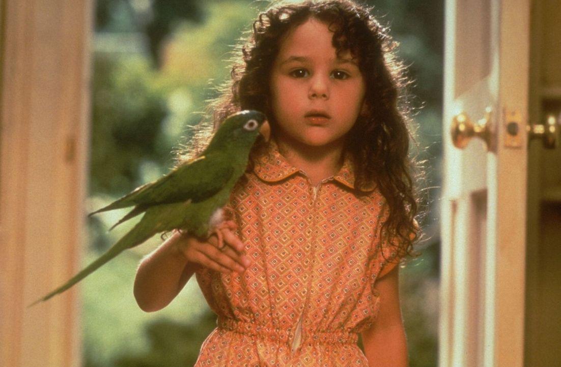 Um ihrem besten Freund, dem Papagei Paulie, möglichst nah zu kommen, startet Marie (Hallie Kate Eisenberg) einen Flugversuch, der natürlich fehlsc... - Bildquelle: DreamWorks