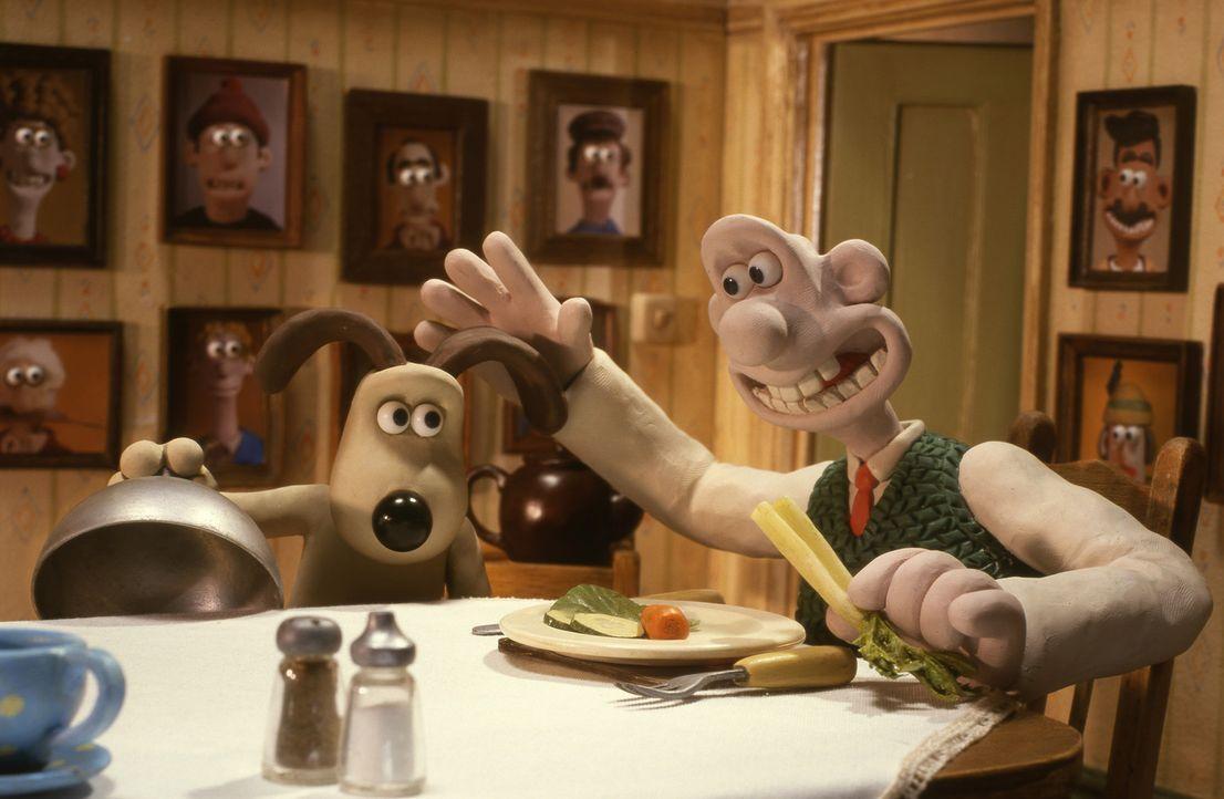 Der liebenswerte Erfinder Wallace (r.) ist stolz auf seinen Hund Gromit (l.), der sogar in der Küche ein As ist ... - Bildquelle: Telepool GmbH