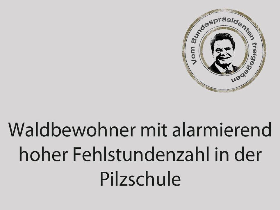 dummschlumpf2 1024 x 768 - Bildquelle: ProSieben