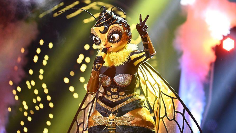 Masked Singer Nächste Folge