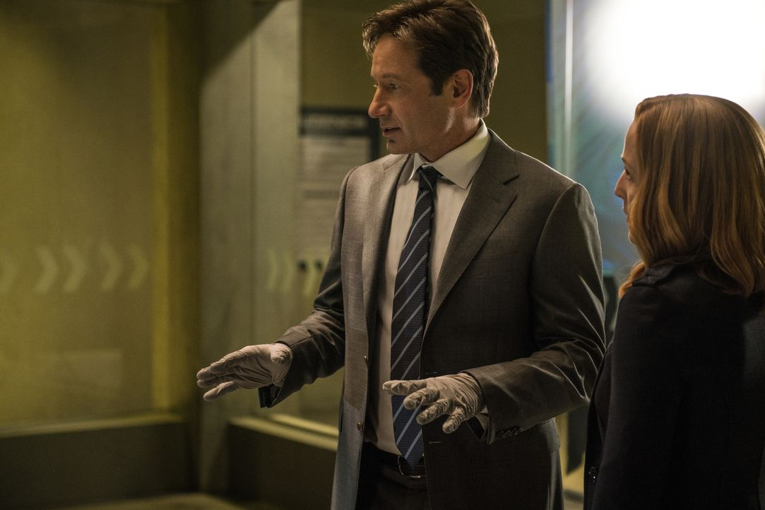 Um den wahren Grund für den angeblichen Selbstmord eines Wissenschaftlers zu finden, müssen Mulder (David Duchovny, l.) und Scully (Gillian Anderson... - Bildquelle: Ed Araquel 2016 Fox and its related entities.  All rights reserved.