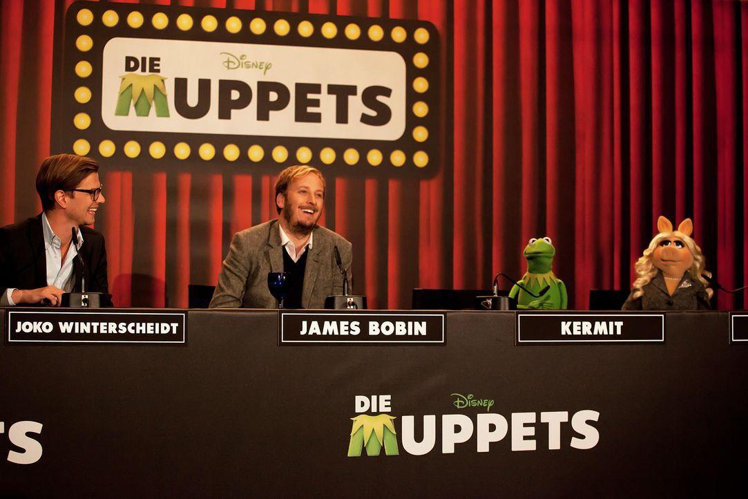 muppets-pressekonferenz-berlin-10-hanna-boussouar-walt-disney-companyjpg 1900 x 1267 - Bildquelle: Hanna Boussouar/Walt Disney Company
