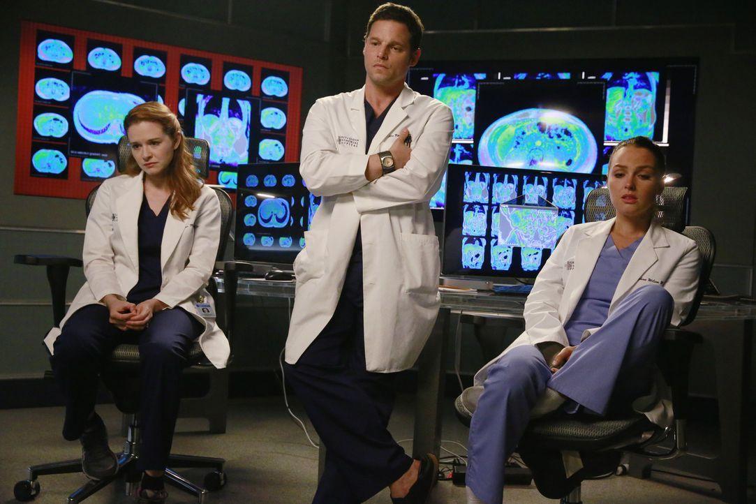 Ein Kleinflugzeug ist in Seattle abgestürzt. Für die Ärzte beginnt ein Kampf um Leben und Tod: April (Sarah Drew, l.), Alex (Justin Chambers, M.) un... - Bildquelle: ABC Studios