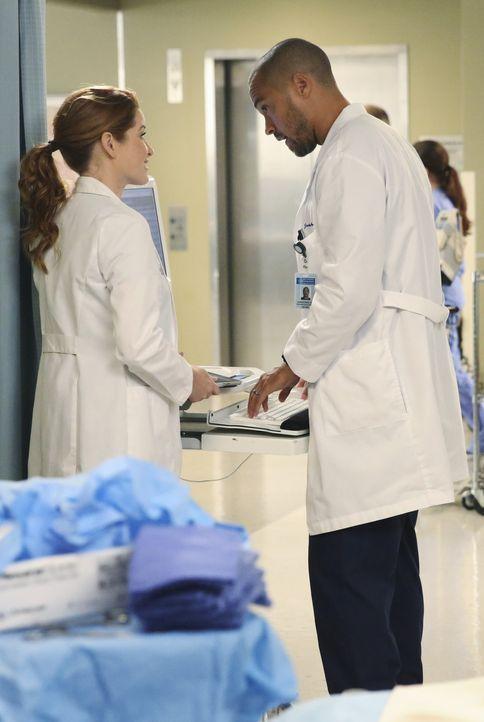 April (Sarah Drew, l.) fühlt sich beauftragt, einen Freund für Owen zu finden. Ob sie Jackson (Jesse Williams, r.) von dieser Idee überzeugen kann u... - Bildquelle: ABC Studios