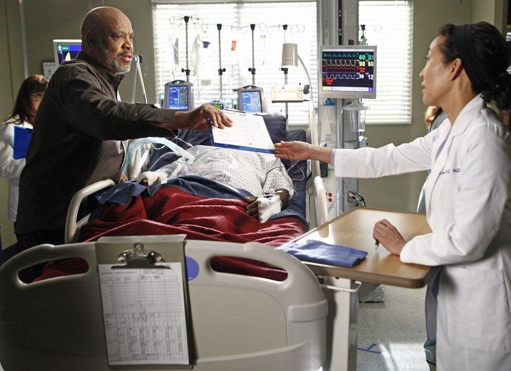 Während Derek die zögerliche Meredith ermutigt, wieder mit ihm in der Neurologie zu arbeiten, steht Cristina (Sandra Oh, r.) vor einer schwierigen... - Bildquelle: ABC Studios