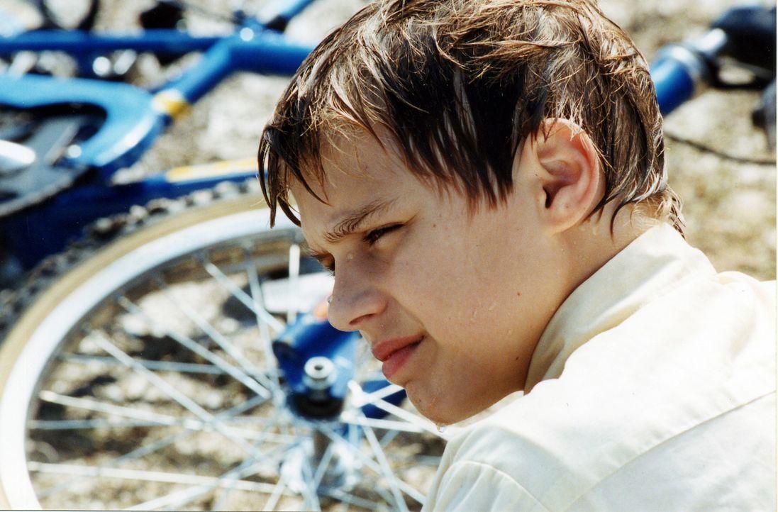 Als Cal (Cody Linley) erfährt, dass sein älterer Bruder im Vietnamkrieg gefallen ist, könnte er einen guten Freund gebrauchen. Aber sein bester F... - Bildquelle: Echo Bridge Entertainment LLC