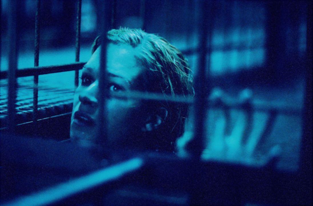 Als Kate (Franka Potente) aus ihrer Ohnmacht erwacht, ist sie in einem Stahlkäfig gefangen und schmutziges, stickendes Wasser steht ihr bis zum Hal... - Bildquelle: TMG