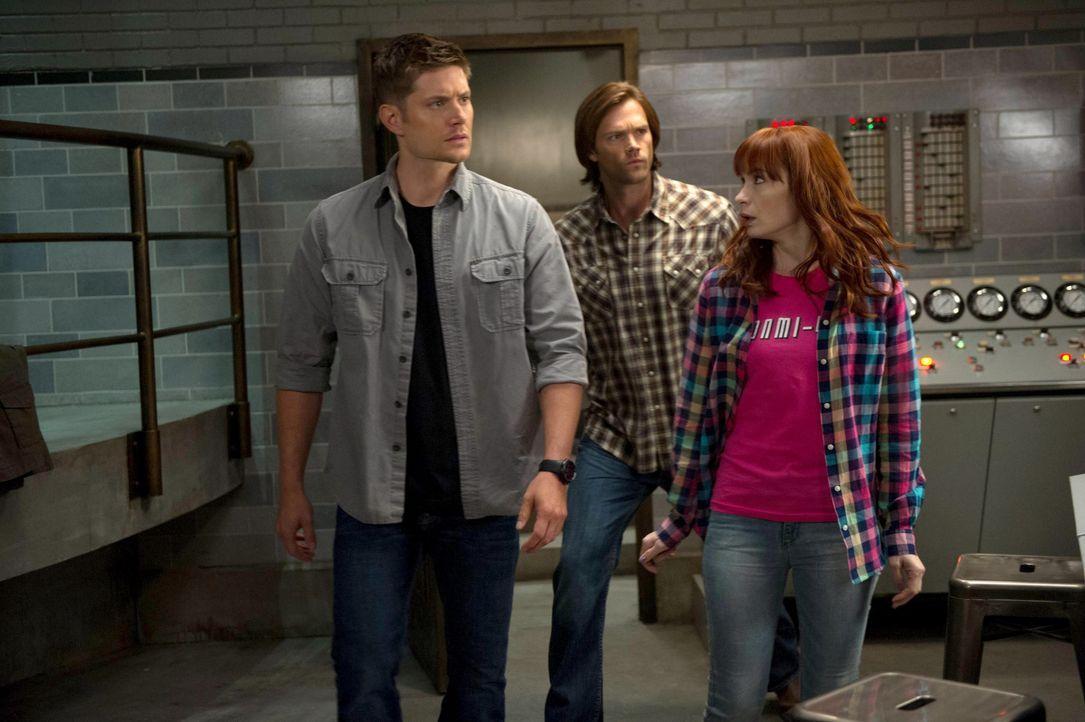 Eigentlich wollten Dean (Jensen Ackles, l.), Sam (Jared Padalecki, M.) und Charlie (Felicia Day, r.) nur eine alte Rechenmaschine wieder auf Vorderm... - Bildquelle: 2013 Warner Brothers