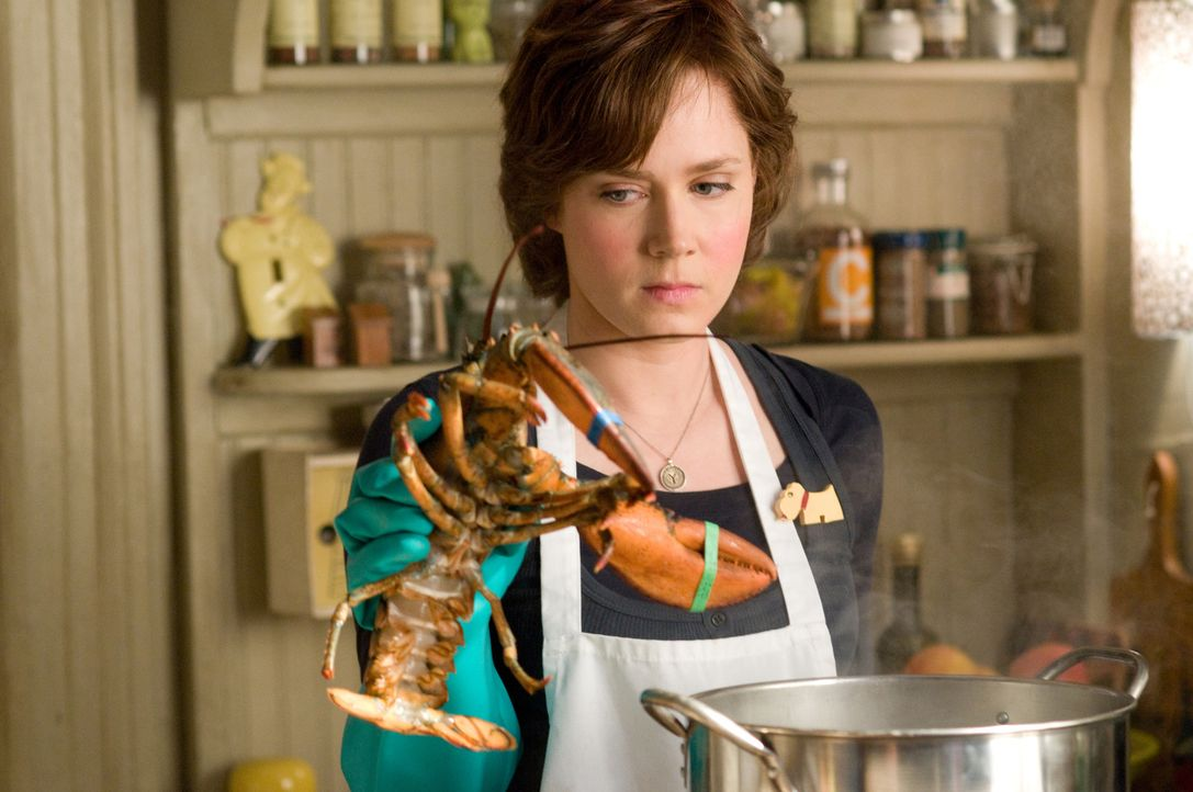 Julie (Amy Adams) kocht innerhalb eines Jahres sämtliche Rezepte im Kochbuch-Klassiker von Julia Childs nach. Sie blogt über ihre Erfahrungen - sehr... - Bildquelle: 2009 Columbia Pictures Industries, Inc. All Rights Reserved.