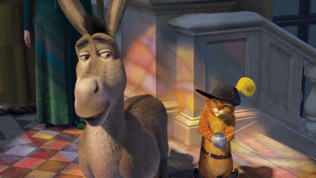 Als König Harold stirbt, macht sich Shrek mit Esel und dem Gestiefelten Kater auf die Suche nach Arthur, dem einzigen möglichen Thronerben - mal a... - Bildquelle: TM &   2007 Dreamworks Animation LLC