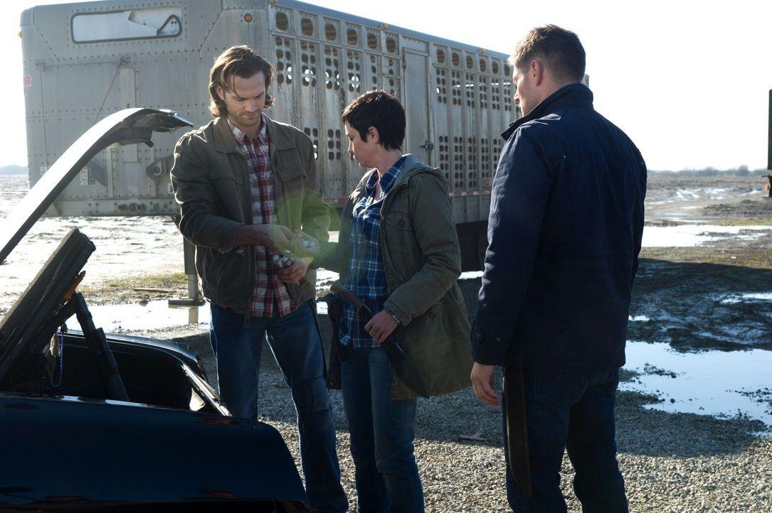 Erkennen Sam (Jared Padalecki, l.), Sheriff Mills (Kim Rhodes, M.) und Dean (Jensen Ackles, r.) zu spät, welche hinterlistige Vampirfamilie sie jage... - Bildquelle: 2013 Warner Brothers