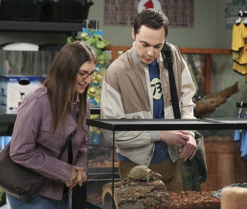 Sheldon (Jim Parsons, r.) und Amy (Mayim Bialik, l.) haben Beziehungsprobleme, als Amy erfährt, dass er sich für eine Mission zur Kolonialisierung d... - Bildquelle: Warner Bros. Television