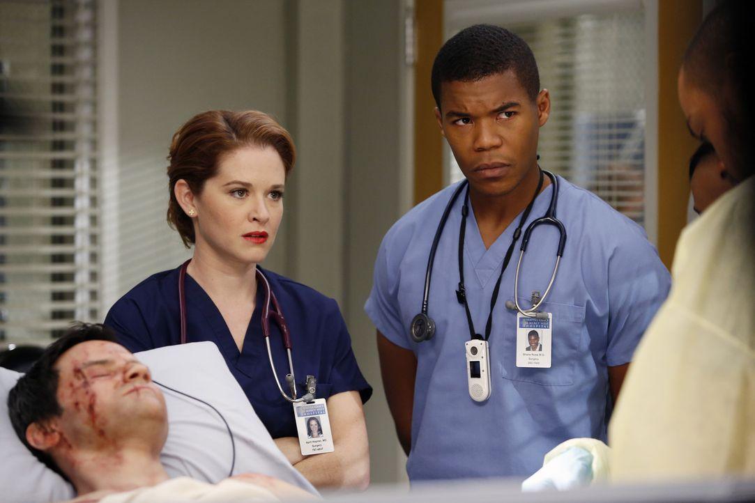 Kümmern sich gemeinsam mit Jackson um Stuart Loeb (Richard Kahan, l.) der bei einem Verkehrsunfall schwer verletzt wurde: April (Sarah Drew, M.) un... - Bildquelle: ABC Studios